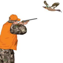 Drawn shotgun bird hunting Guide Online Study vest hunter