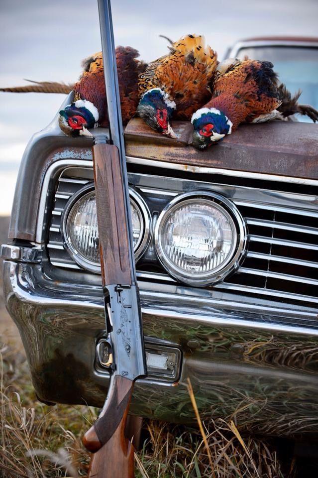 Drawn shotgun bird hunting Best Hunting on about 419