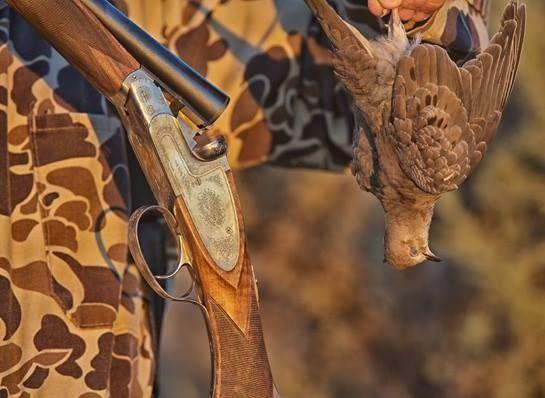 Drawn shotgun bird hunting Shotguns Pinterest about on this