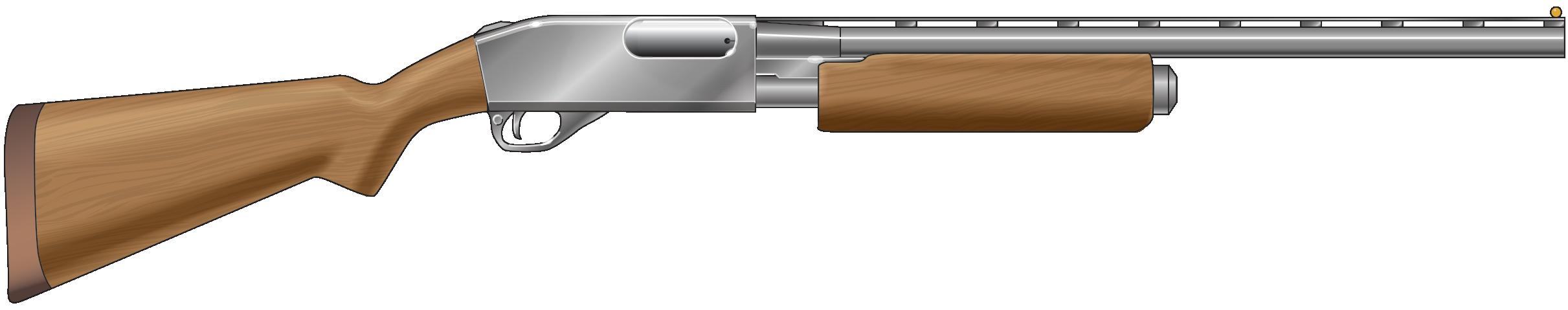 Drawn shotgun pump action Action  South a Carolina