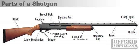Drawn shotgun revolver gun Gun a Firearm of Basic