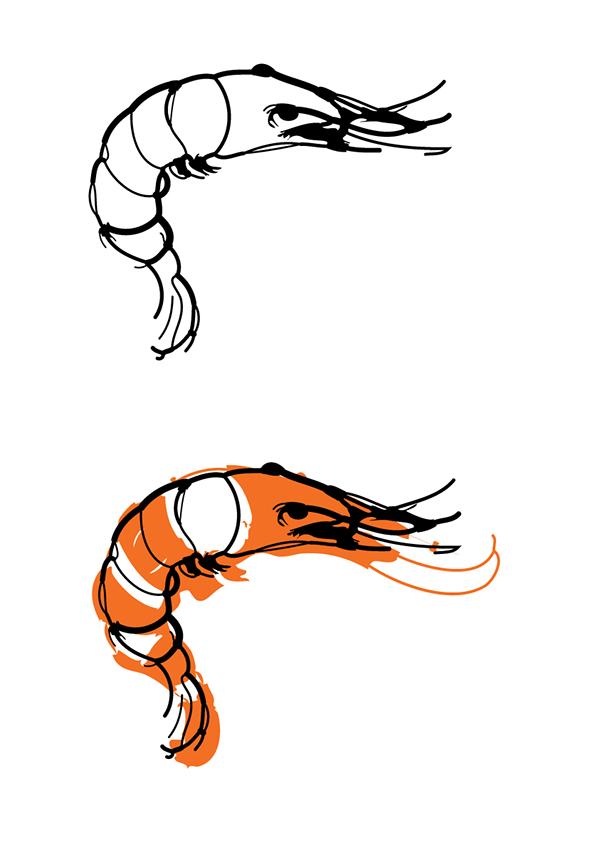 Drawn shrimp Fresco Shrimp in after Behance