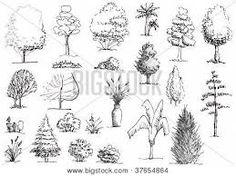 Drawn shrub Landscape 36 draw how jpg