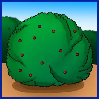 Drawn bush easy How bush How Bush com