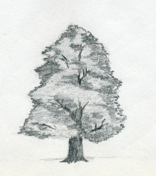 Drawn demon tree #1