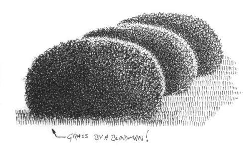 Drawn bush realistic 2 WetCanvas Tutorial  [Archive]