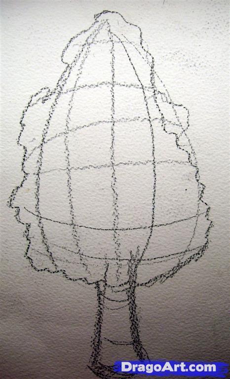 Drawn shrub step by step Draw realistic bush 54 and