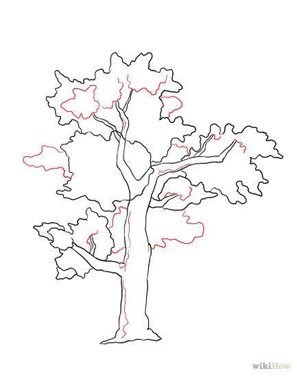 Drawn shrub step by step  Draw Drawing a Tree