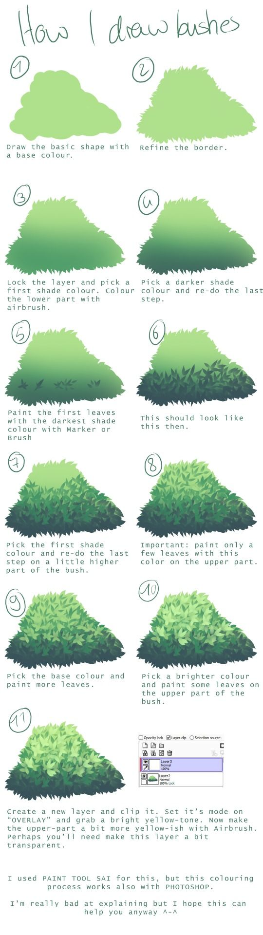 Drawn shrub step by step Use How How I requested
