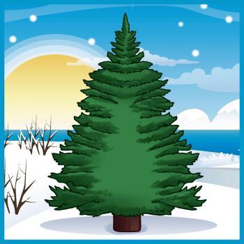 Drawn fir tree easy How How draw com to