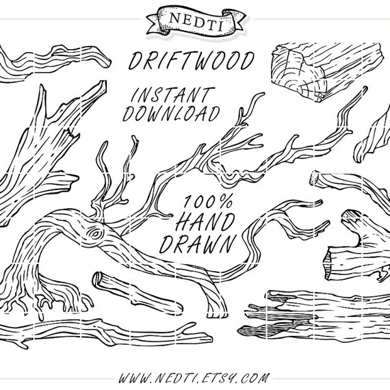 Branch clipart drawn Clipart drawing driftwood logo (570×570)