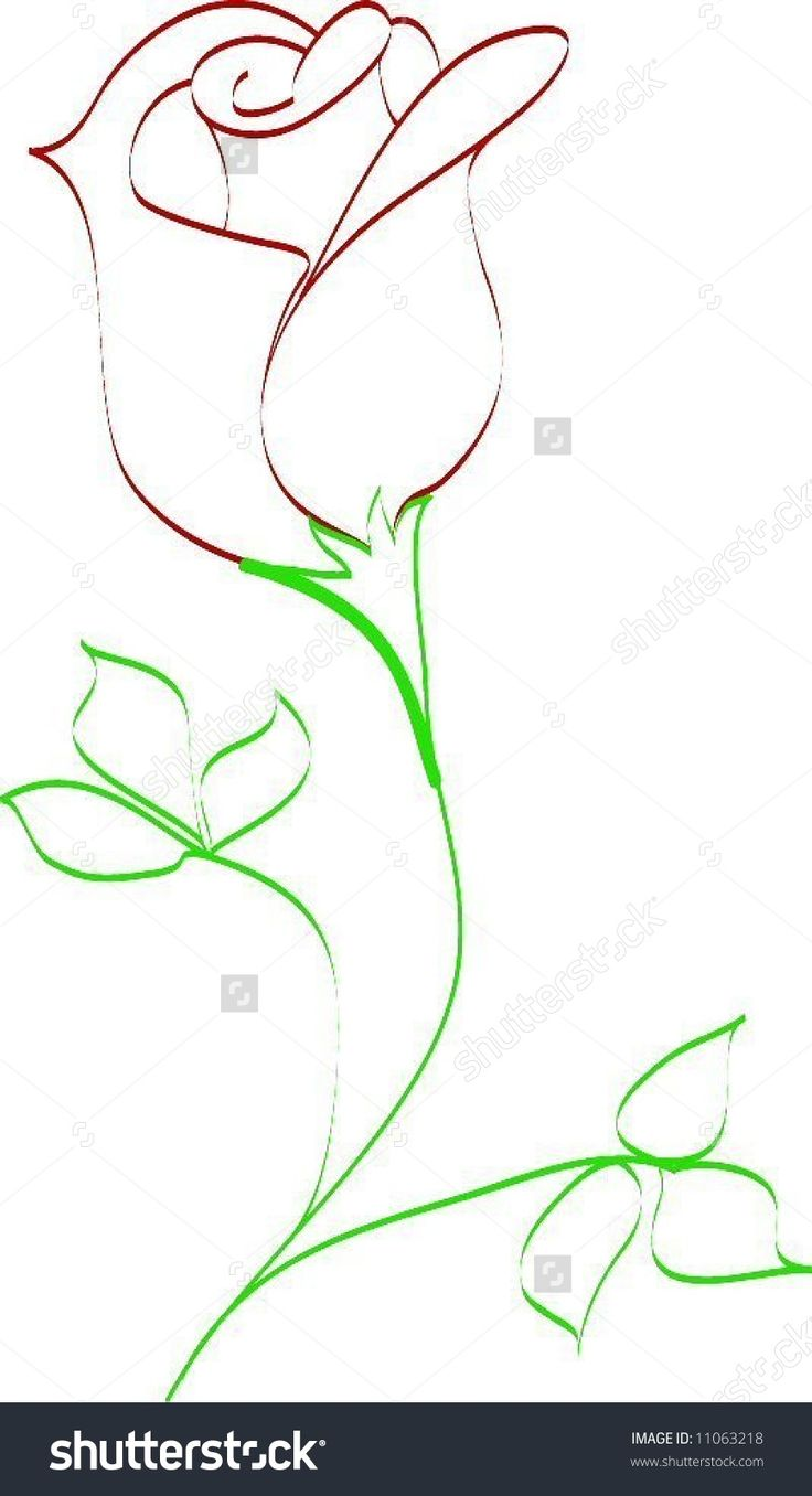Drawn rose draw a Rose Rose Bud Illustration Best