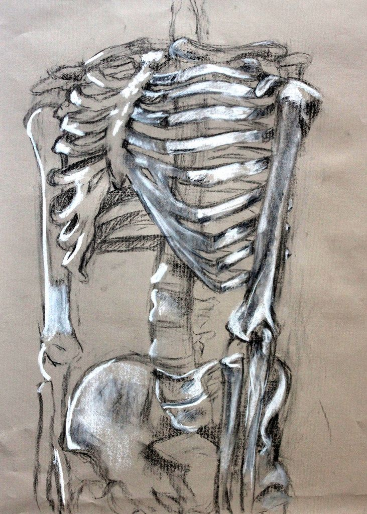 Drawn skeleton Crayon paper Assignment ideas Skeleton