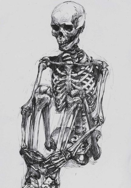 Drawn skeleton : Skeleton Drawing Skeleton Insane