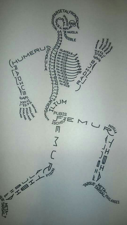 Drawn skeleton abstract It of describing words Pinterest