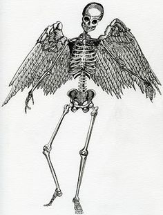 Drawn skeleton angel Ink angel kiss Google Search