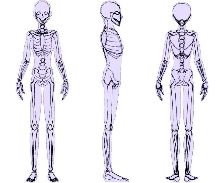 Drawn skeleton anime Desenho skeleton anime técnicas de