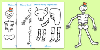 Drawn skeleton funnybones Moving to Funnybones Support Primary