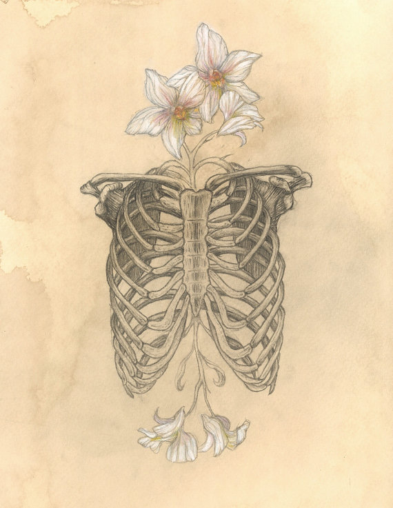 Drawn skeleton heart tumblr Poster Limited AETHERIUMEMPORIUM NATURE by