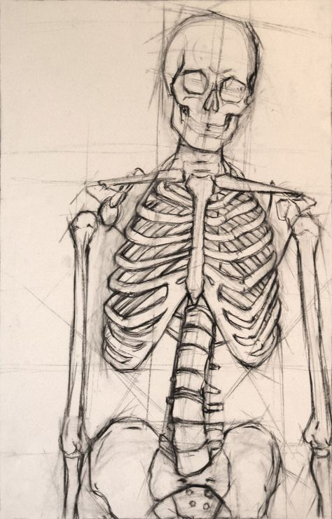 Drawn skeleton reference Drawing  on 301 best