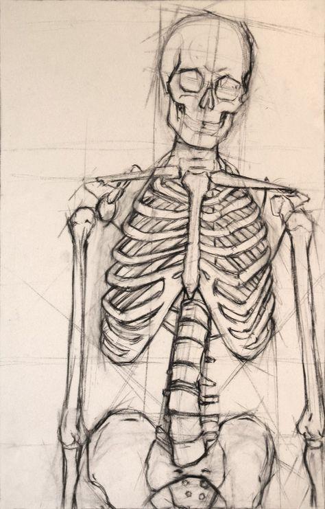 Drawn skeleton reference Drawing  best Figures Line