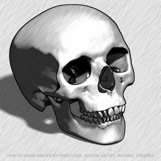 Drawn ssckull To to 6 How Skulls