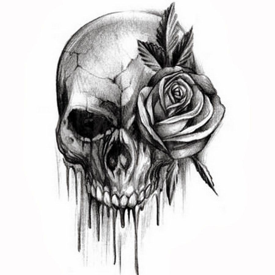 Drawn skull designer Image black for  result