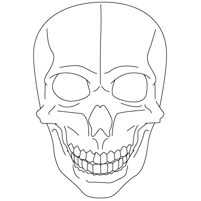 Drawn skull fun Drawing More  More Drawing