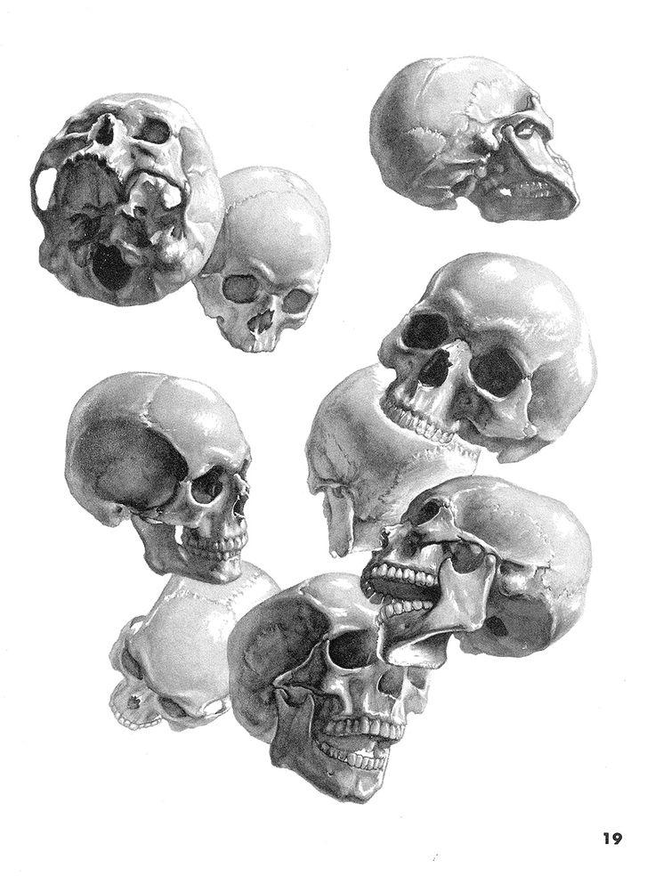 Drawn skull perspective On Best  Pinterest 25+