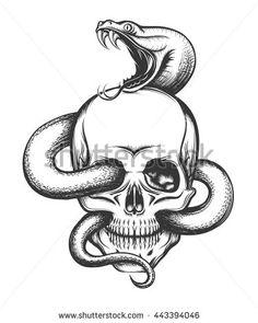 Drawn skull snake IDEAS Pinterest Skull with skull