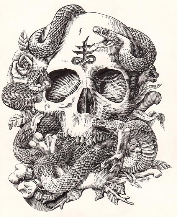 Drawn skull snake Snake and on snake Google