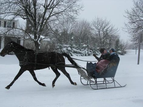 "Drawn sleigh Little the Little Robin"" horse"