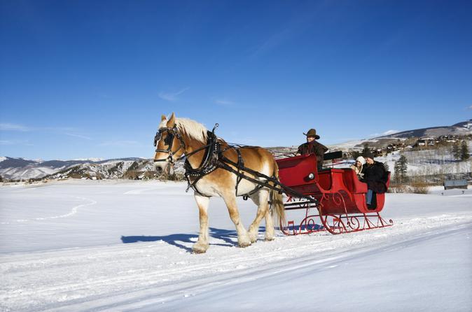 Drawn sleigh (with Salzburg Sleigh Prices) Ride