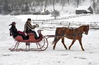 Drawn sleigh Horse at Drawn Drawn 2