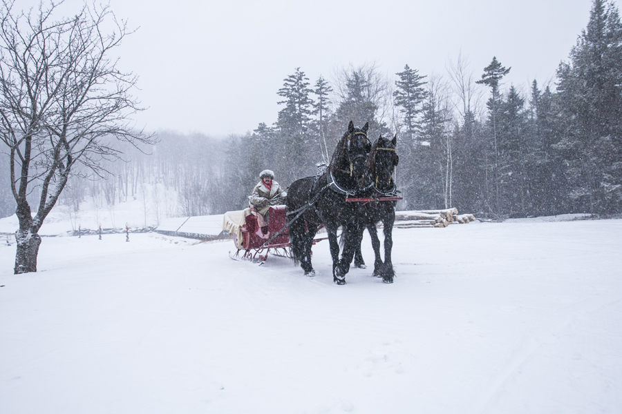Drawn sleigh Hermitage Sleigh Drawn Horse Club