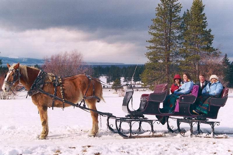Drawn sleigh Drawn Horse Tahoe Sleigh