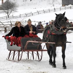 Drawn sleigh Over celebrates Drawn Old