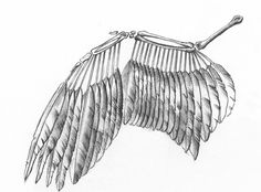 Drawn sleleton angel Anatomy Sandy Scott and In