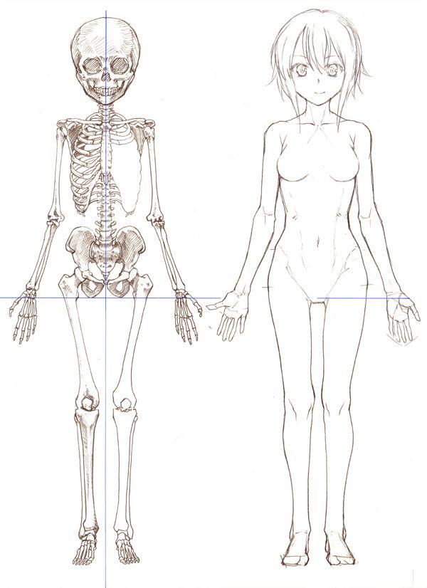 Drawn skeleton anime Female on Body 60 Pinterest