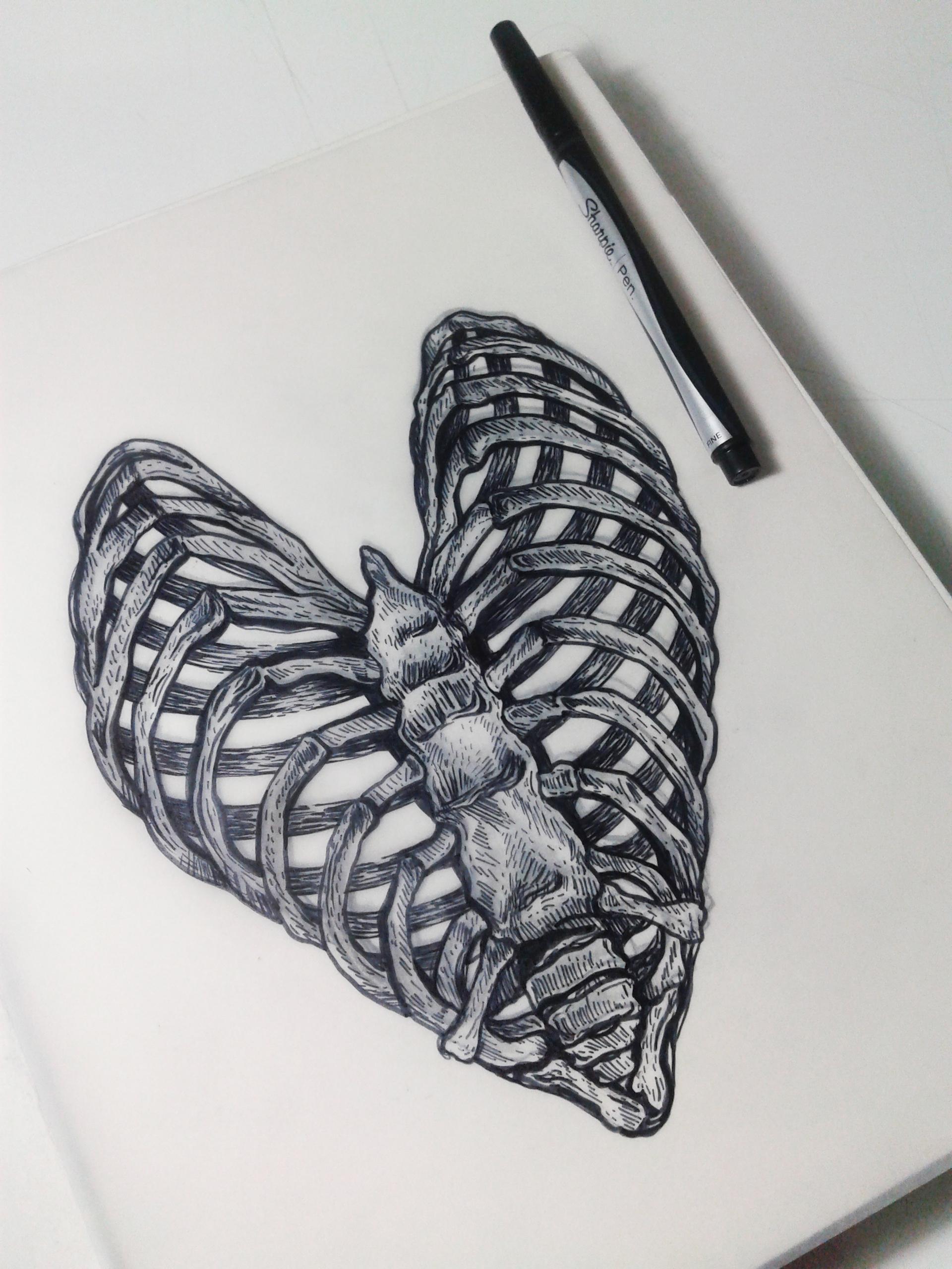 Drawn skeleton heart tumblr  For Facebook Skeleton for