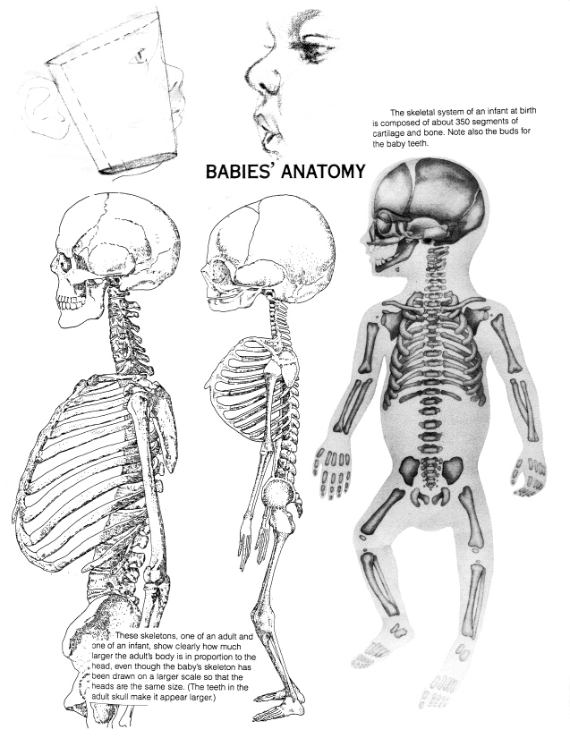 Drawn skeleton baby X Judy Baby Your Your