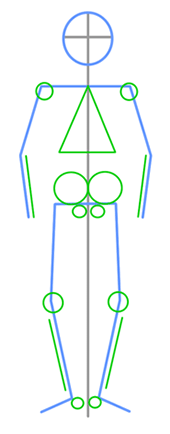 Drawn sleleton basic Details Skeleton  How How