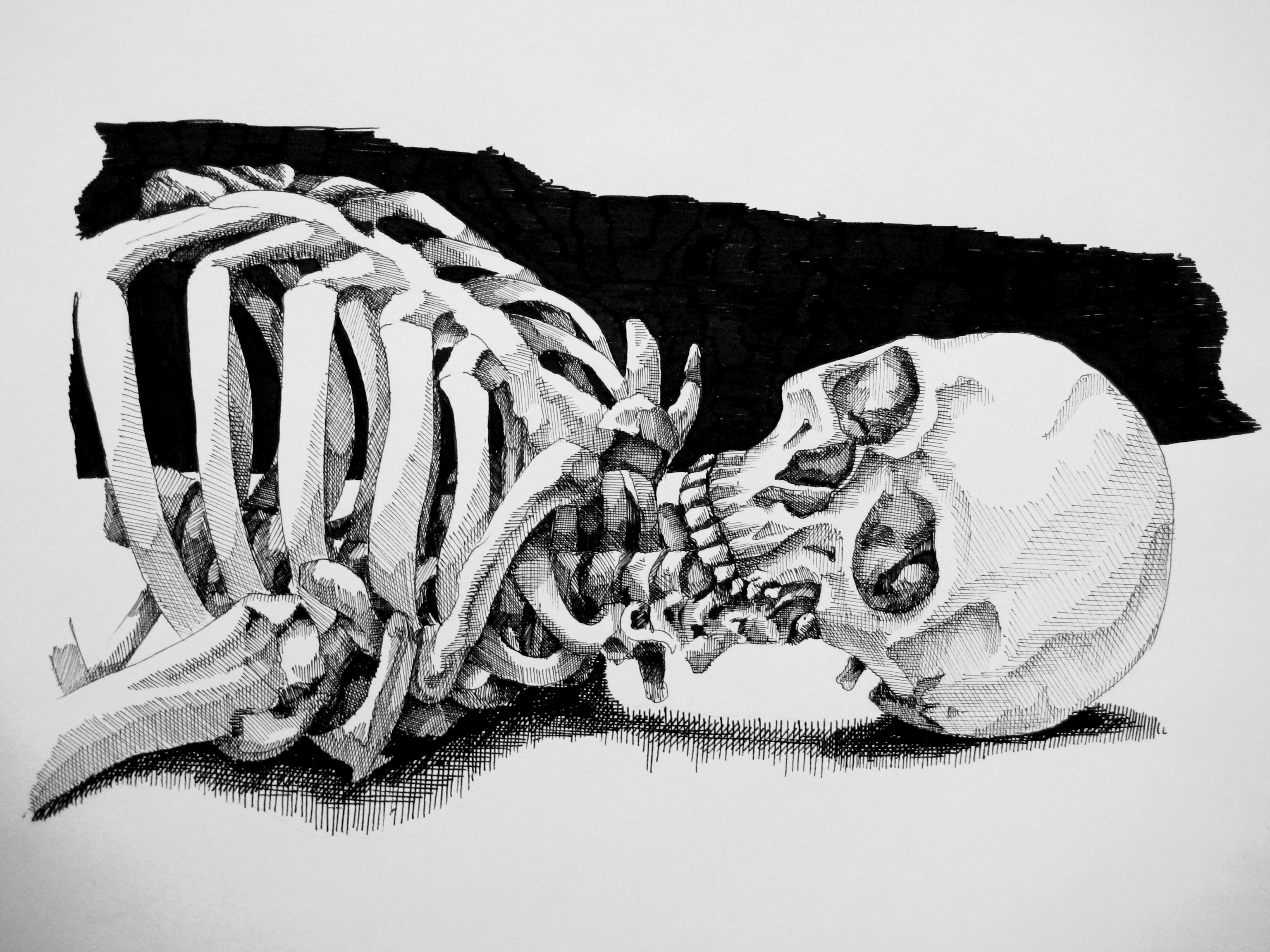 Drawn sleleton bone art Wreaked and The of wreaked