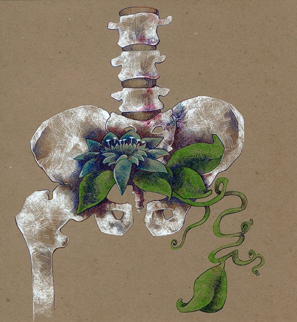 Drawn sleleton bone art Skeleton Art Skeleton Flower Krislyn
