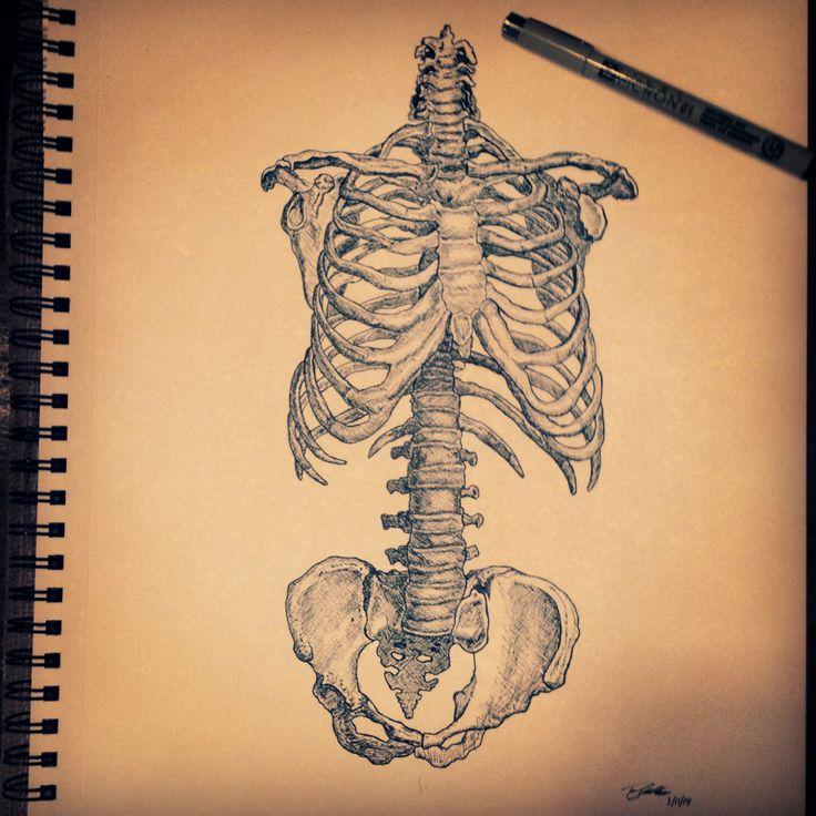 Drawn sleleton bone art #bones yet piece # forms