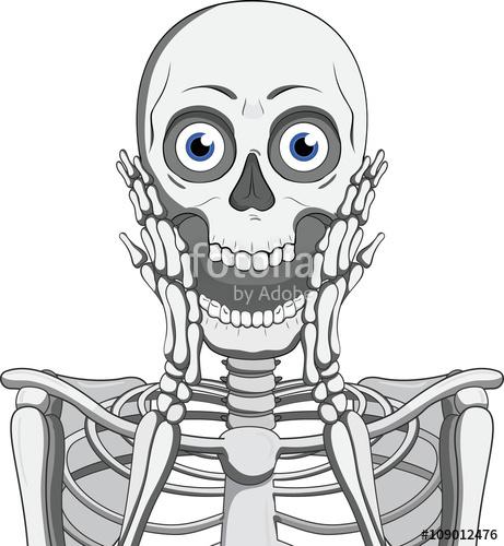Drawn skeleton cartoon Vector illustration vector skeleton Skeleton