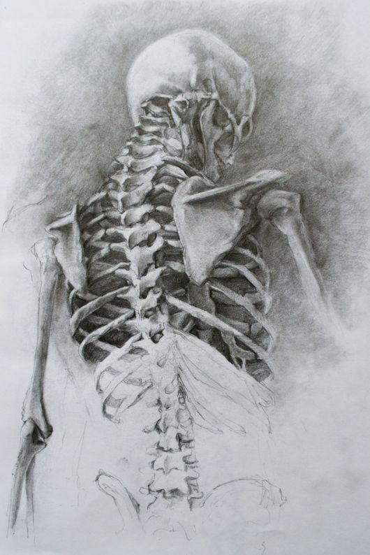 Drawn skeleton detailed  〉 by Heart skeleton