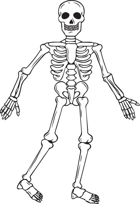 Sleleton clipart coloring page More! Skeleton and Halloween #2