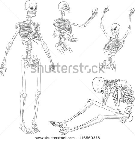 Drawn sleleton fun Skeleton active several active poses