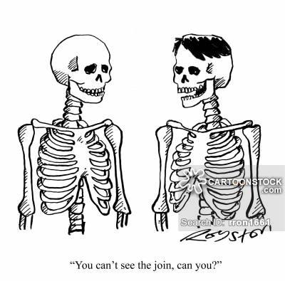 Drawn sleleton funnybones Piece funny cartoons piece Hair